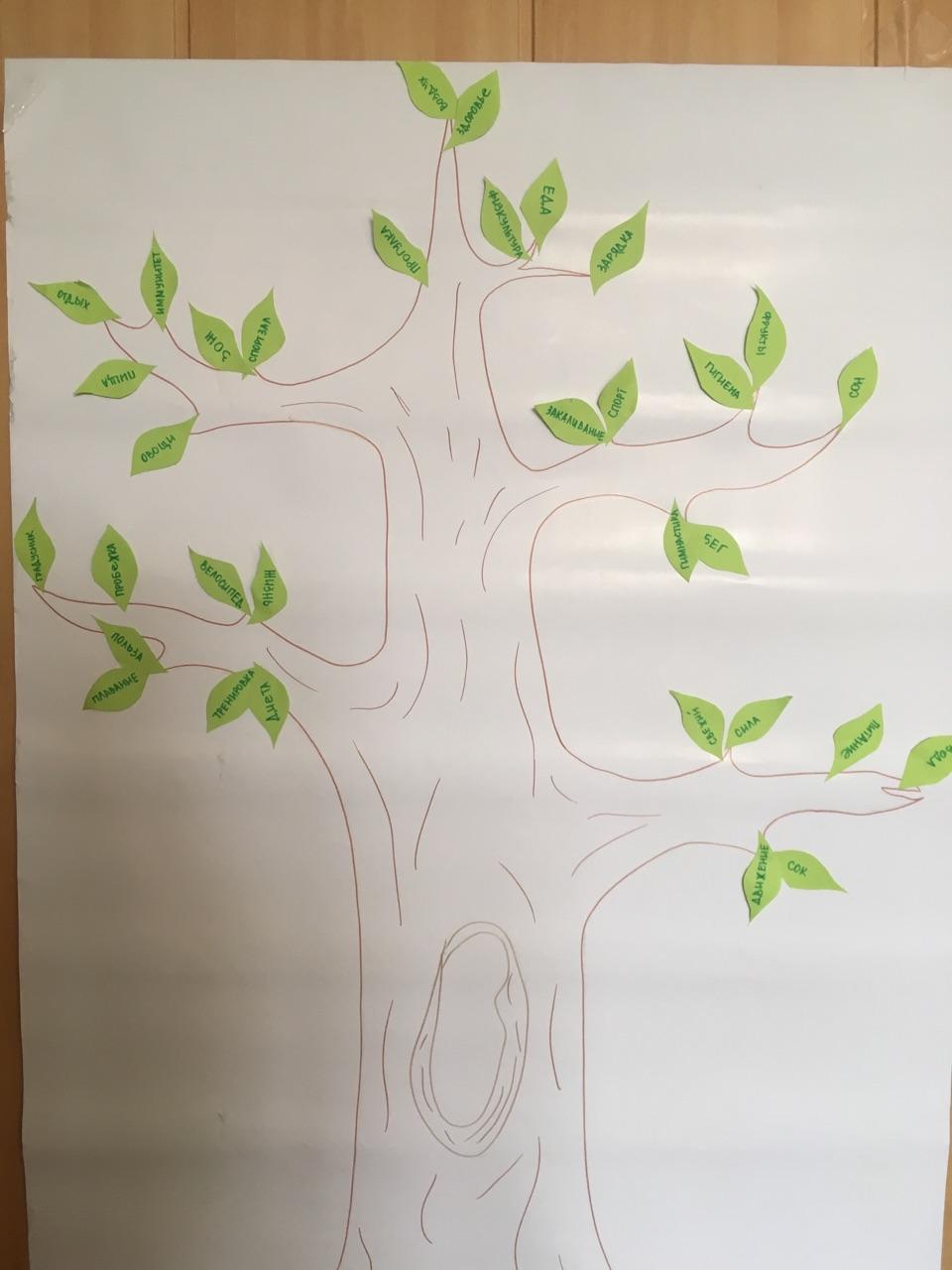 Дети «вырастили» свое дерево здоровья